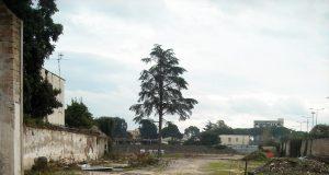 Casalnuovo, ecco come si presenta ora l'area della fabbrica Moneta