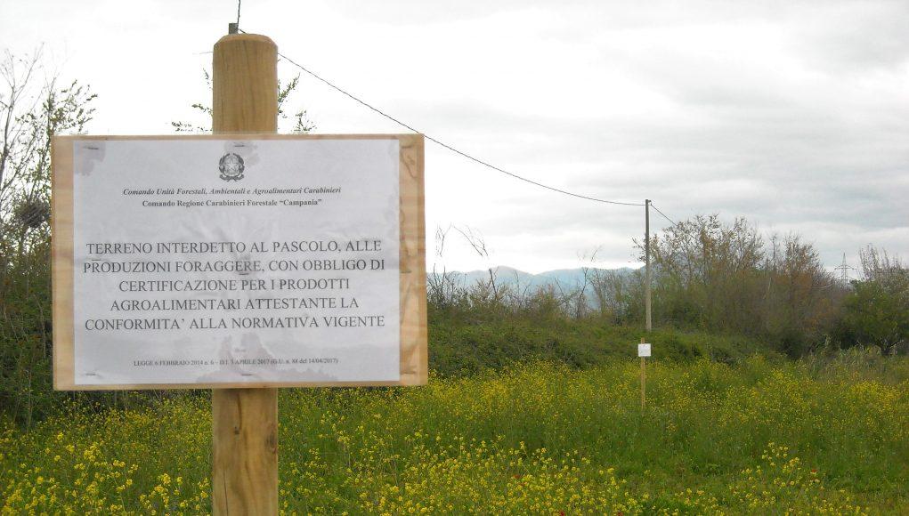 Acerra, il terreno di Frassitelli interdetto al pascolo