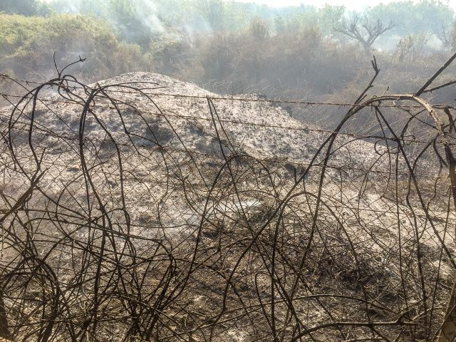 l'incendio della discarica di Calabricito nel 2019